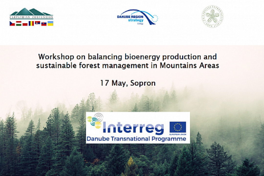 Workshop on balancing bioenergy production and sustainable forest management in Mountain Areas