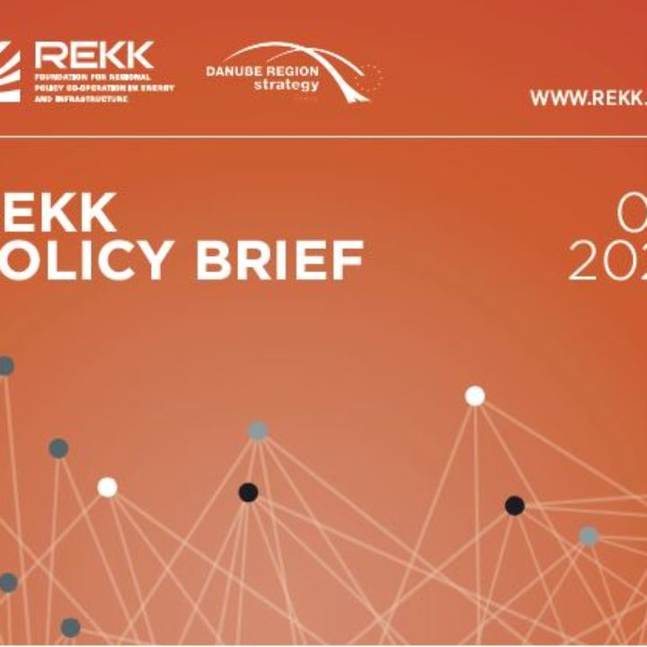 Publication of policy briefs about the Danube Region national energy and climate strategies and the expected developments in the region